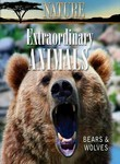 Nature: Extraordinary Animals: Bears and Wolves