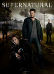 Supernatural: Season 9 (2013) [TV]