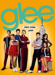 Glee: Season 5 (2013) [TV]