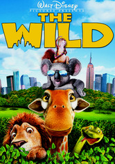 Rent The Wild on DVD